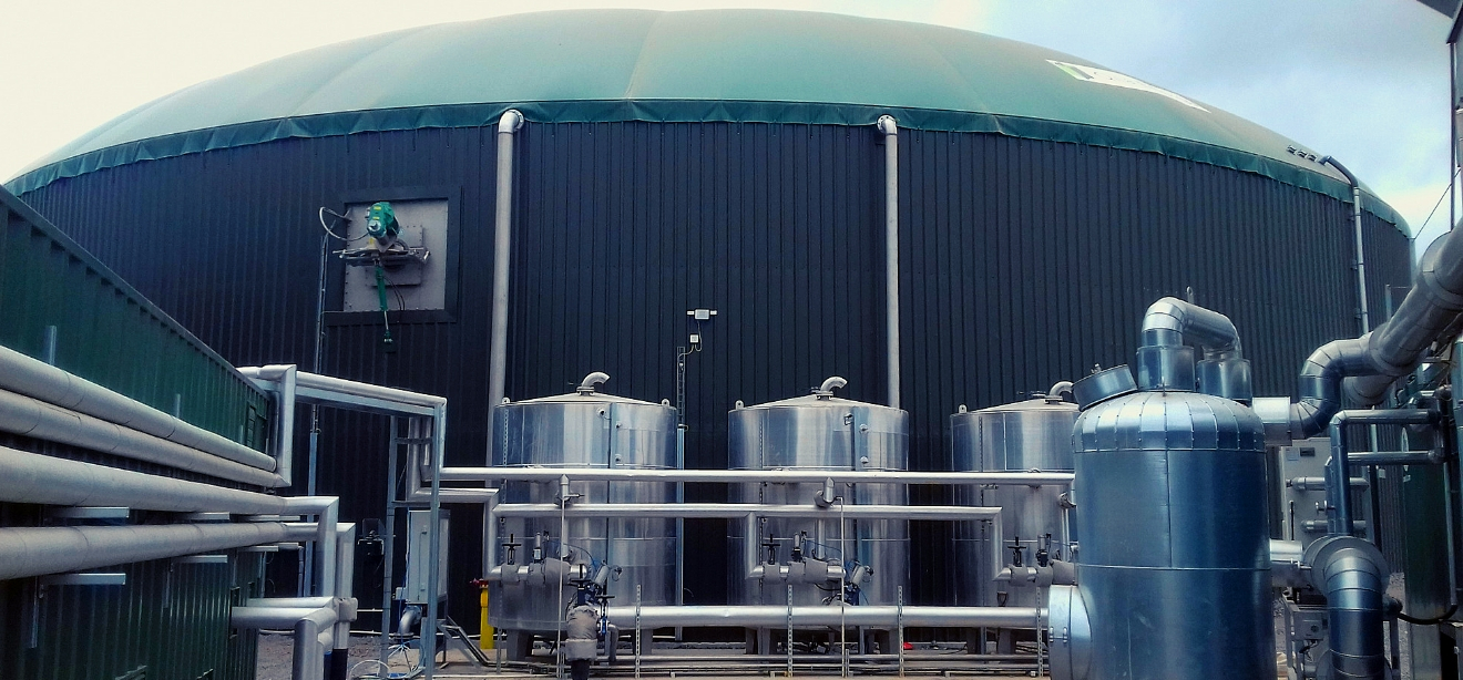 Pasteuriser and boiler supply and installation